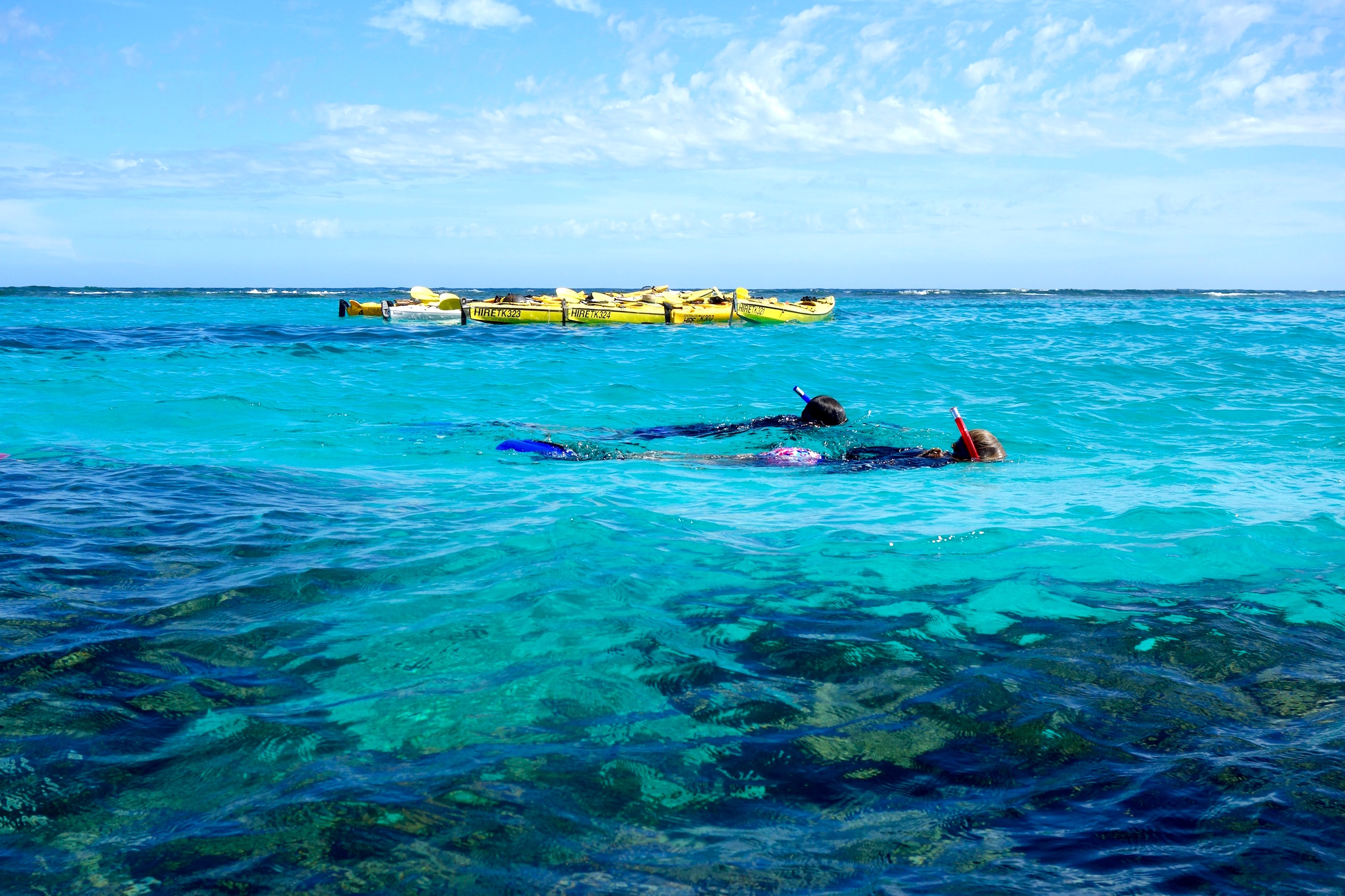 3 day Reef and Beach, 4 day Reef and Beach and Whale Shark Adventure Package, camp, sea kayak, snorkel, eco tour, Ningaloo Reef, Cape Range National Park, Exmouth Adventure Co, Western Australia