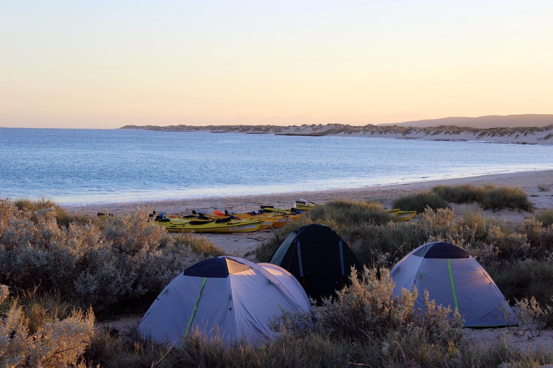3 day Reef and Beach, 4 day Reef and Beach and Whale Shark Adventure Package, camp, kayak, snorkel, eco tour, Ningaloo Reef, Cape Range National Park, Exmouth Adventure Co, Western Australia
