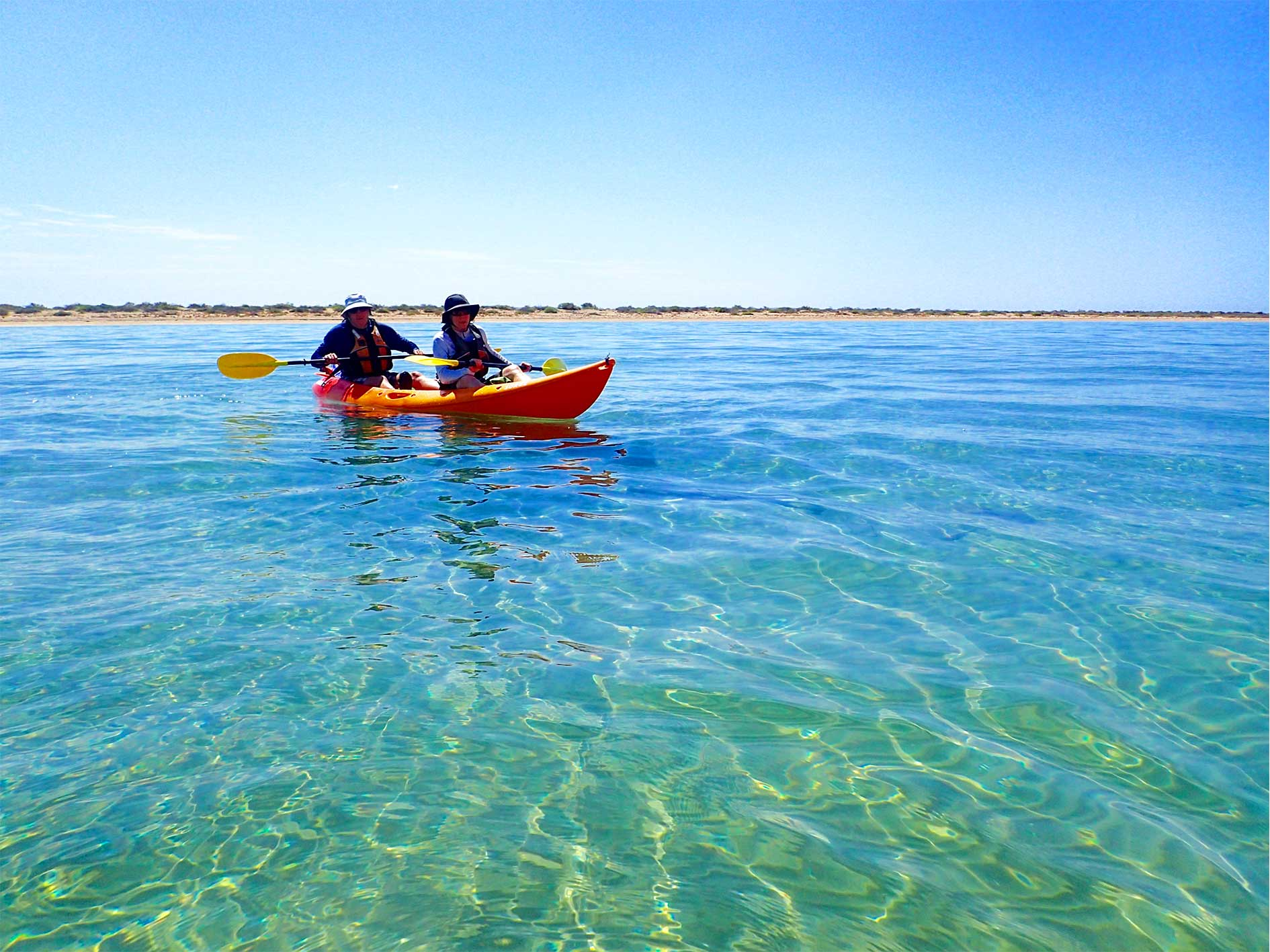 Couple paddle a double sit-on-top sea kayak on Turtle Tour, Ningaloo Reef, Exmouth Western Australia