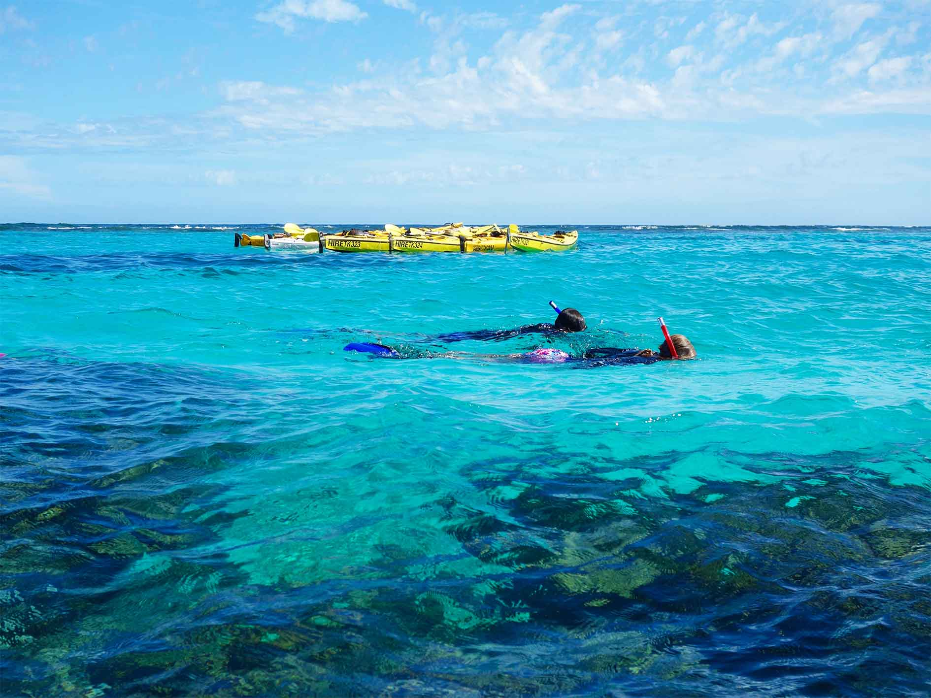 reef and beach tour, sea kayaking and snorkelling tour, overnight tours on Ningaloo Reef. Snorkel from your kayak on the coral reef